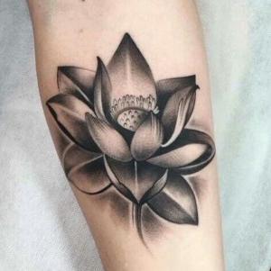tatuaje de loto negro